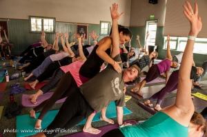 145_yogafest2013